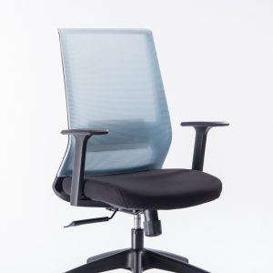 Kano Office Chair EZ03B (Blue)