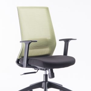 Kano Office Chair EZ03C (Green)